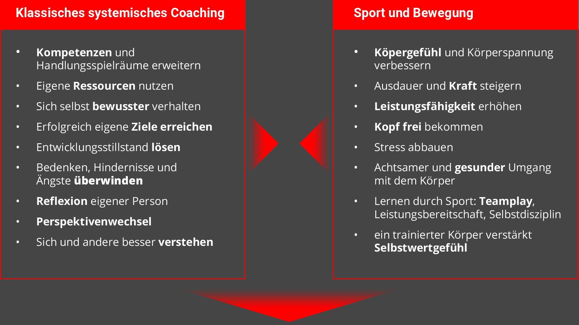 Systemisch Sport