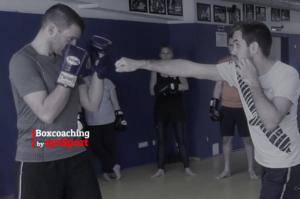 sysbox4Leader: Workshop für Führungskräfte und Manager @ Munich MMA Gym | München | Bayern | Deutschland